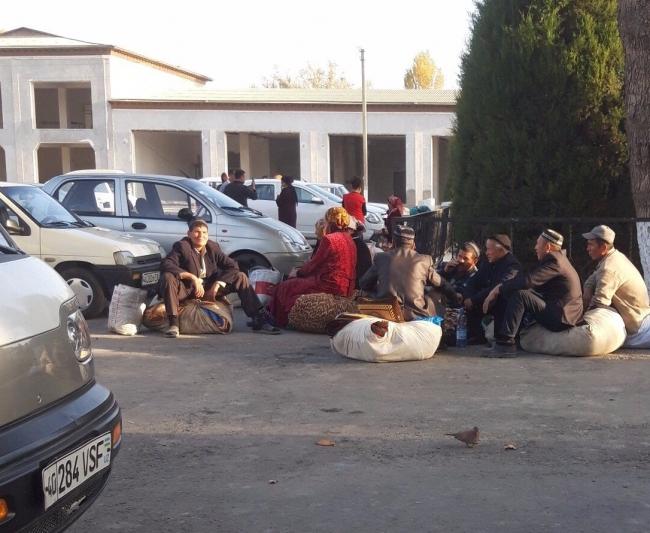 Работники школ и детских садов из Бувайдинского, Учкуприкского и Багдадского районов Ферганской области были отправлены собирать хлопок с ночевкой на 5 дней. 26 октября 2018 г