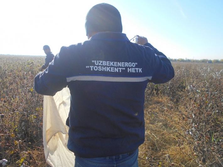 Узбекэнерго. Фото Тимура Карпова
